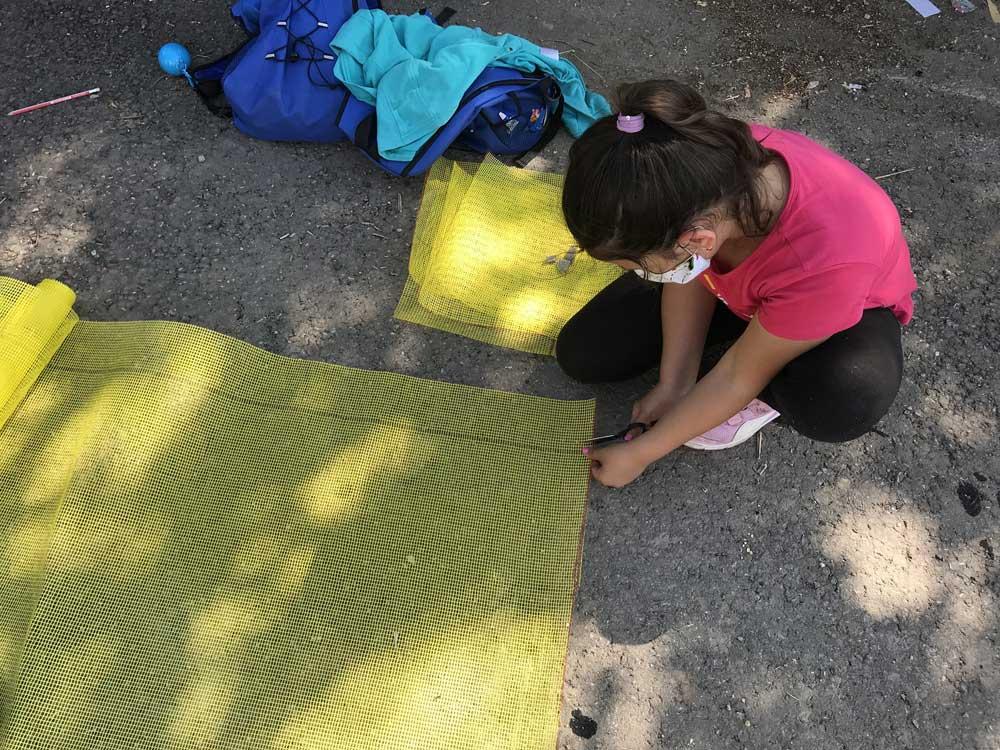 Viata-la-tara-program-cules-plante-flora-spontana-copii-colaborare-encare-environmnetal-care-resources-noi-orizonturi-(3)