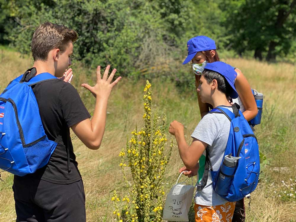 Viata-la-tara-program-cules-plante-flora-spontana-copii-colaborare-encare-environmnetal-care-resources-noi-orizonturi-(4)
